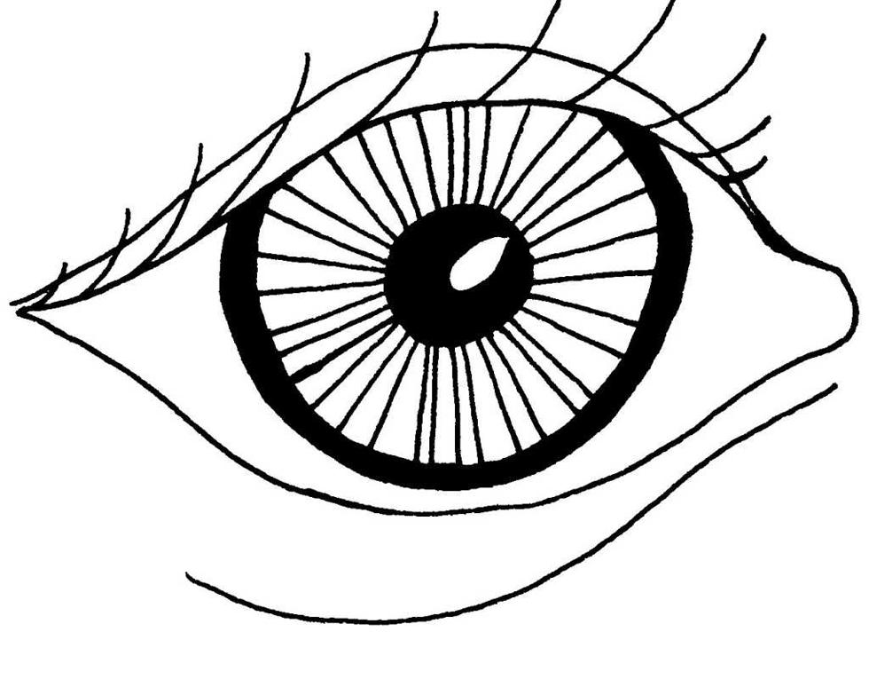 Dessin d'oeil avant pose de belles lunettes